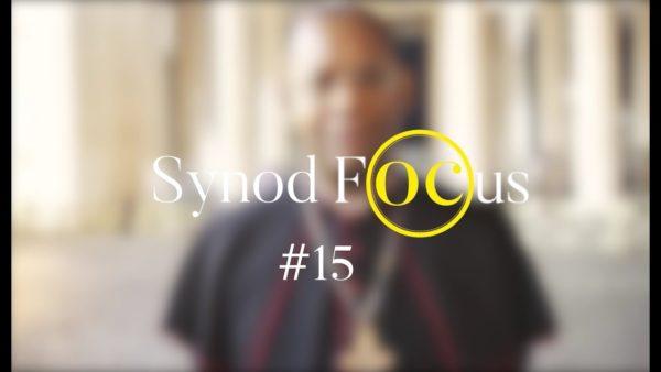 """""""Que les jeunes fassent partie de Communautés très porteuses"""" – Synod Focus #15"""