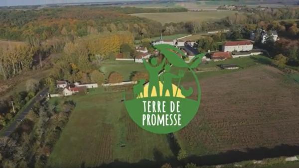 Terre de promesse : un projet d'écologie intégrale